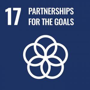 Partnerships For The Goal